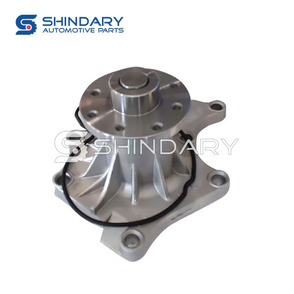 Water pump N1307110001 for ZX AUTO