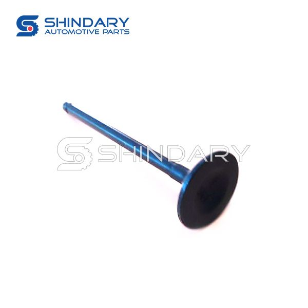 Exhaust valve 1003013GG010 for JAC S2