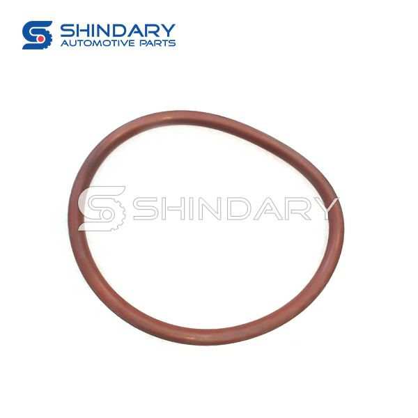 SEAL RING, FUEL PUMP 1106013 for GONOW TROY 500 GA491