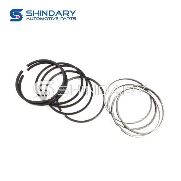 RING SET 1004030FA130 for JAC SUNRAY