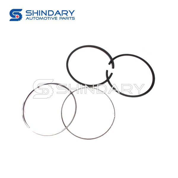 Piston ring subassembly E049303000032&3&4 for FOTON Aumark