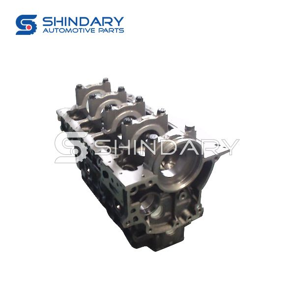Cylinder body subassembly 1002100FA020XZB1 for JAC HFC1036