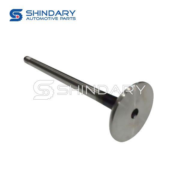 exhaust valve 481H-1007012CA for CHERY E5