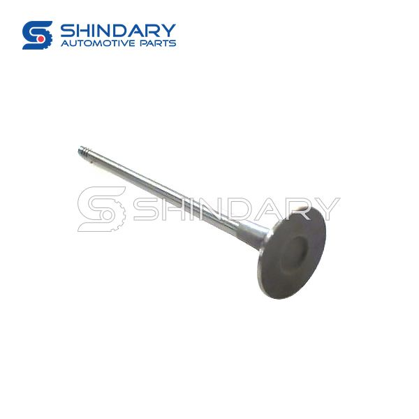 exhaust valve 477F-1007012 for CHERY J15
