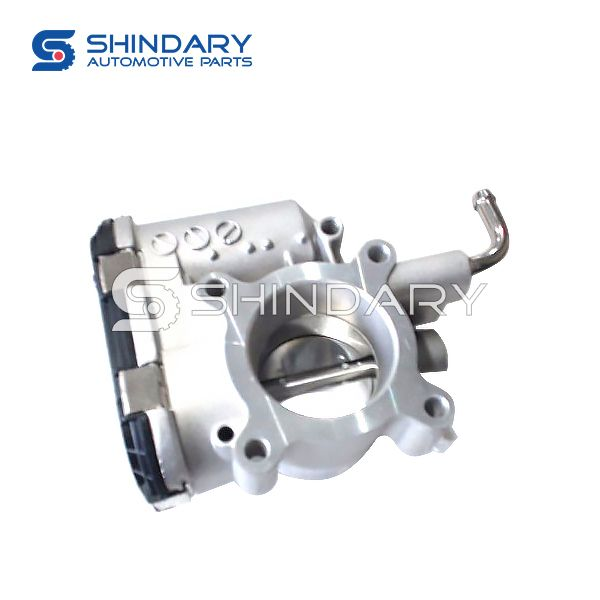 Throttle valve Assy 3765100-EG01 for GREAT WALL