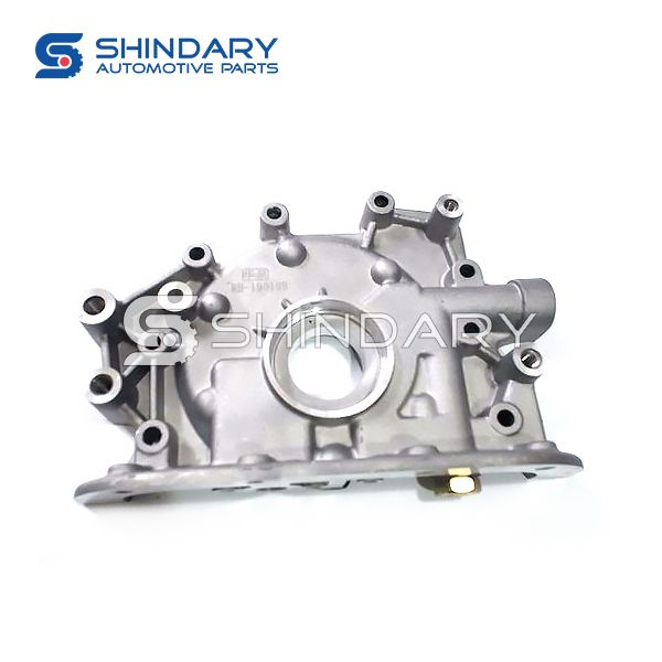 OIL PUMP ASSY 1011000A0000 for DFSK