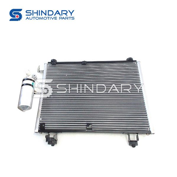 Condenser Assy 1021-8105000 for CHANGHE