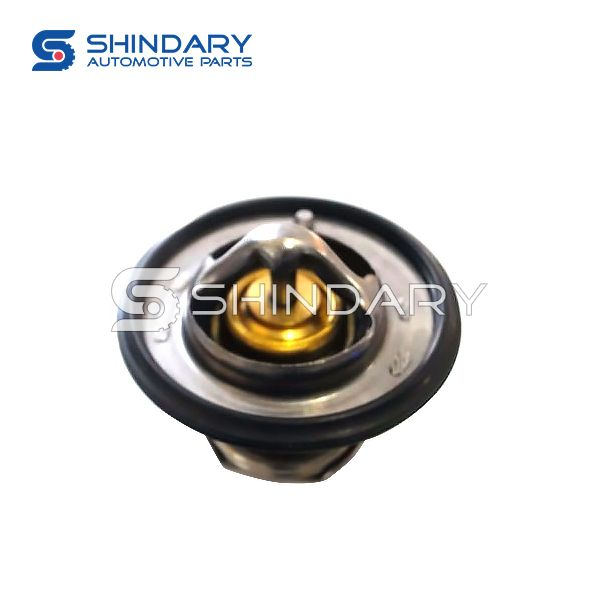 Thermostat Assy 3102177 for BRILLIANCE