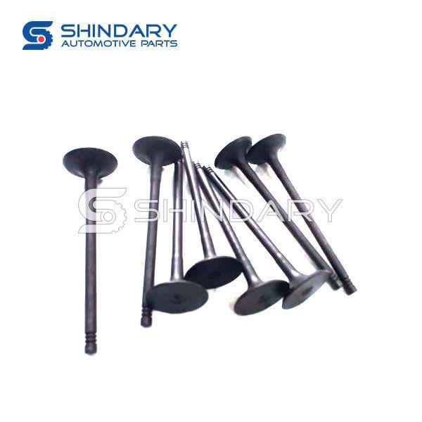 Inlet valve E4G16-1007011 for CHERY