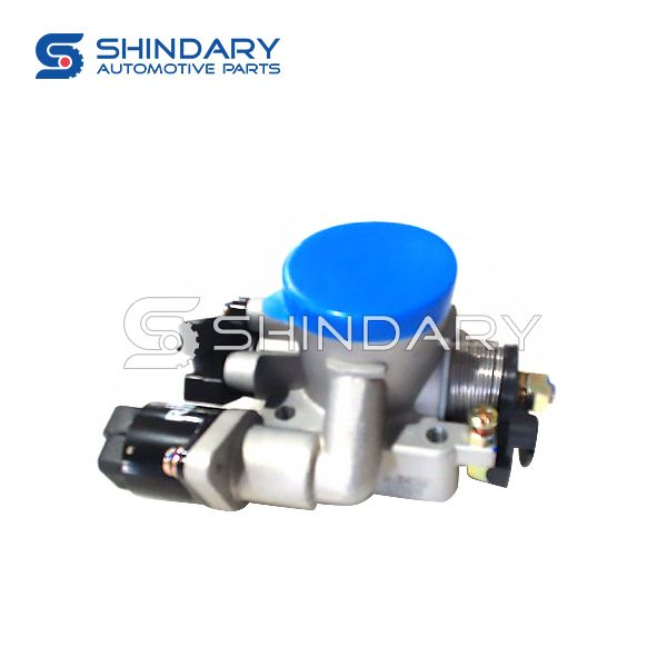 Throttle valve Assy 1000020-10110 for GONOW GA5023XXY