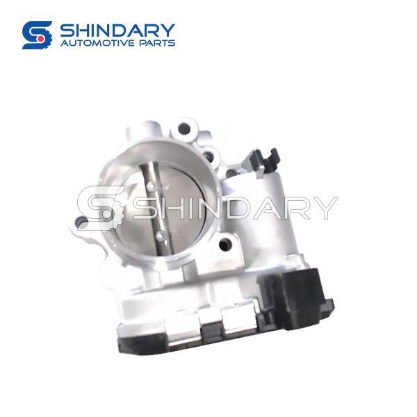 Throttle valve Assy 10081089 for HAWTAI A25