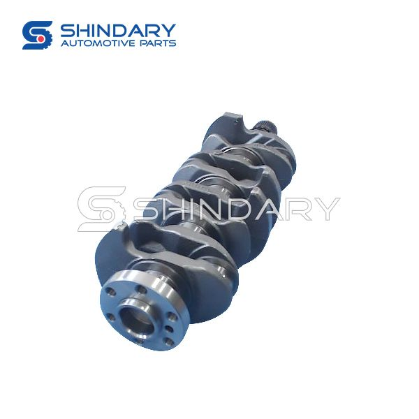 Crankshaft Assy 100503006 for ZOTYE z300