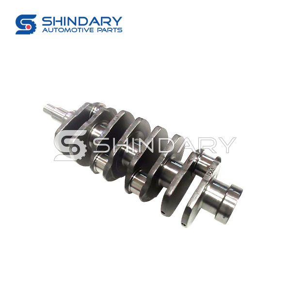 Crankshaft Assy 4651A1005022 for SAIC