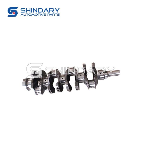 Crankshaft Assy BQ1005015 for ZX AUTO