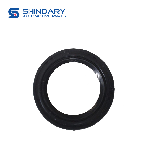 OIL SEAL, INPUT SHAFT 17010017-B01-000 for BAIC 206
