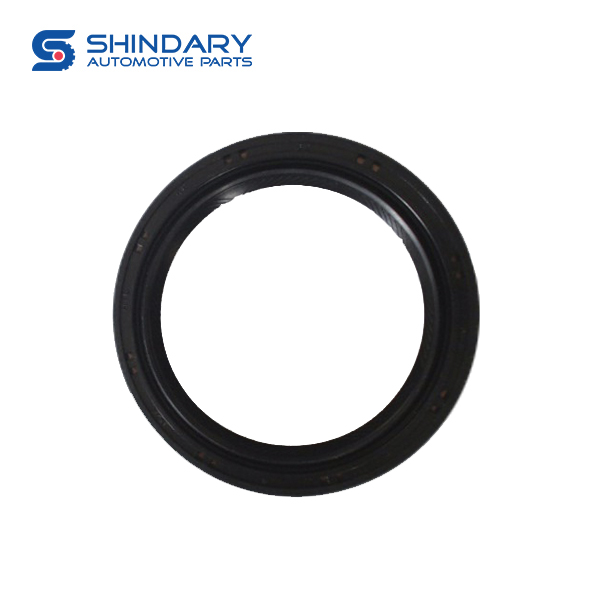 HALF-AXLE OIL SEAL ASSEMBLY 24010112-A02-000 for BAIC 206