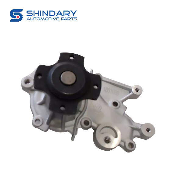 Water pump 1307000B0000 for DFSK