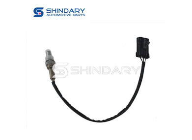 What is the Principle of Oxygen Sensor?