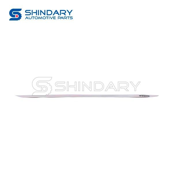 Stainless steel body trim SDR-CSLT-001 for Special models
